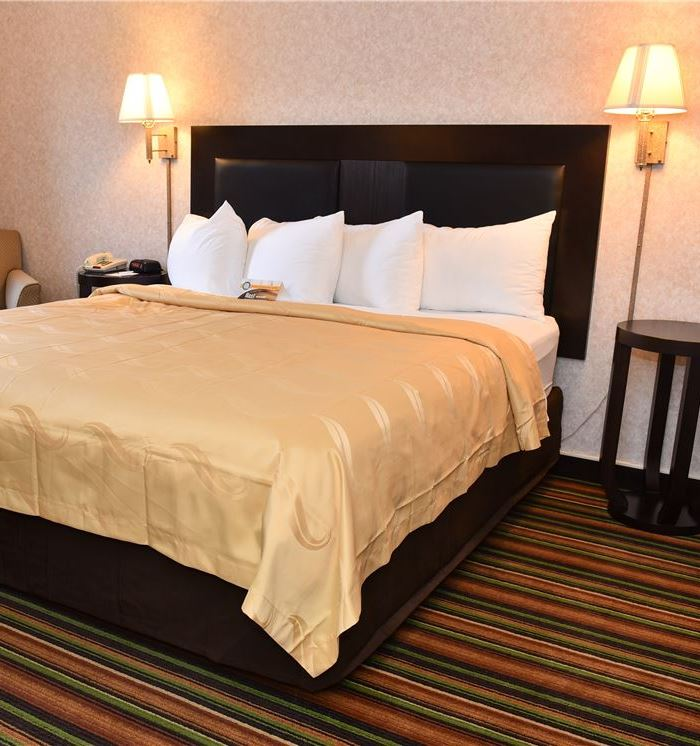 Marietta Hotel Business King Guest Room