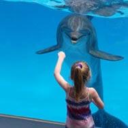 Marietta, Georgia Aquarium